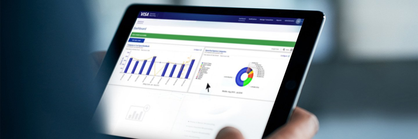 VISA reporting tool on an Ipad for business banking